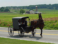 Are birth defects in amish caused by a mutation or a chromosonal abnormality?