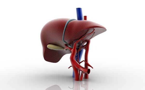 What effect can being Septic have on liver function?