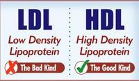 Total cholesterol is 232..Ldl direct is 150..Tc/hdl cholesterol ratio is 5.4...Do i need medication or is it normal?
