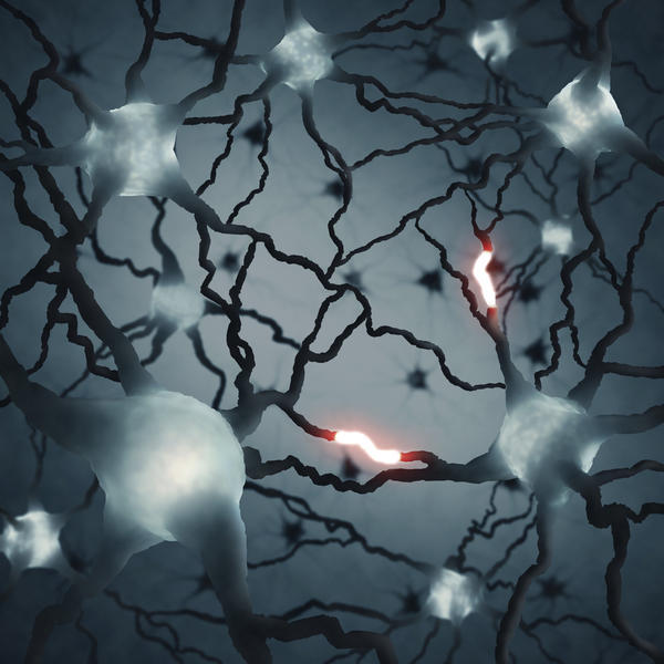 Which are the neurotransmitters involved in the creative process?