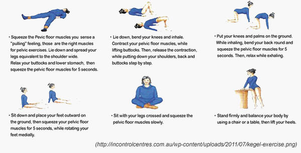 Pelvic Floor Muscles Pelvic Floor Muscles Relaxation Exercises