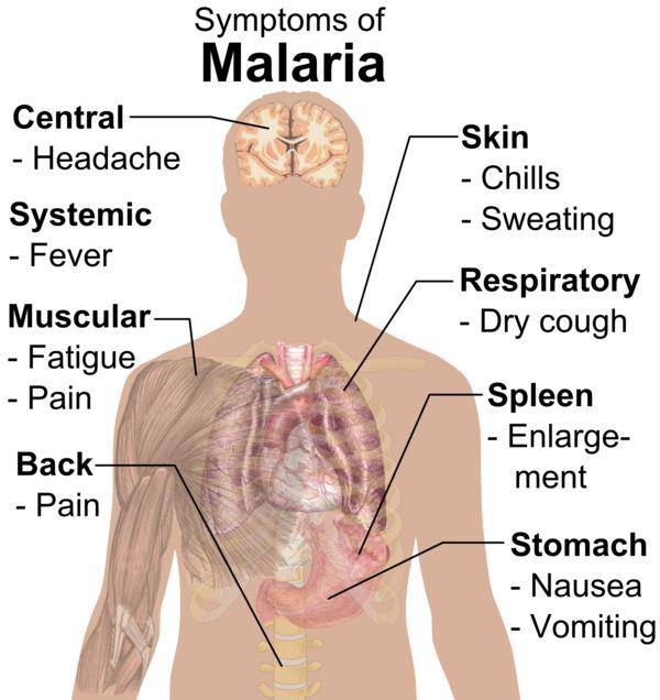 Can you tell me how is malaria and west nile virus different?