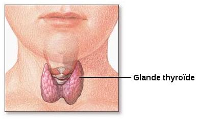 If I have biopsy of thyroid with cancer, what are my chances of survival?