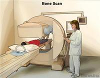 Please explain difference between ct, mri, and pet scans. Thank you?