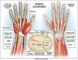 I have a very sharp pain on the top of my wrist. I haven't had any trauma. It's like a sharp pinch. Should I see a doctor for it ?