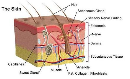 Melasma or dark patches on face Showed many doctors nothing works Discolred chin area No rash Dry skin Age 42 Half uterus removed no period?