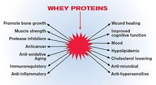 Are protein supplements like whey dangerous? I heard that our body becomes loose and soft if we discontinue it. Is is not good for a beginner? I'm 20