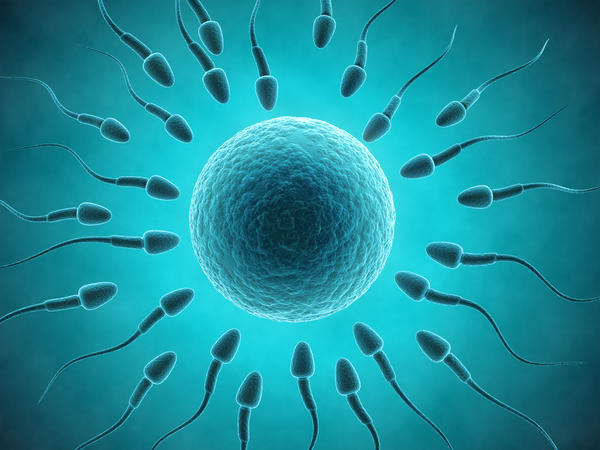 Trying to conceive, is it true that you have to lay down after sex for sperm to travel up? I had sex but I got up and some came out then I laid down