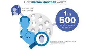 Can u donate bone marrow if u take midrin or tylenol often?Or klonopin,neurontin,wellbutrin,synthroid,vit d 50,000 IU wkly,or seroquel occasionally?