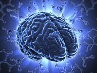 What is acute disseminated encephalo myelitis?