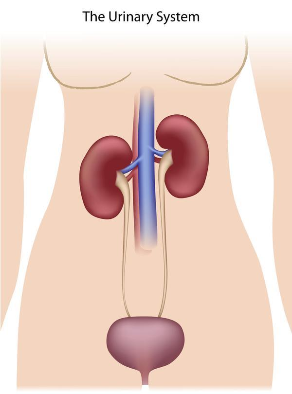 What to do with interstitial cystitis or painful bladder syndrome?
