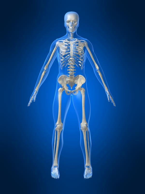 How does exercising improve bone health?