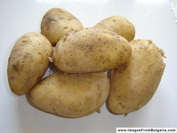 Does anyone have any experience with potato allergy? How can I fix potatoes to avoid it?