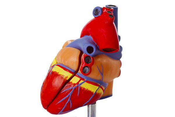 Will left-ventricular assist device therapy replace need for a heart transplantation?