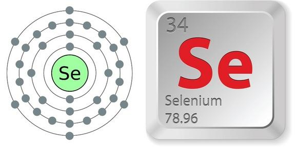 Is selenium harmful ? Does it lead to death or any other disorders ?