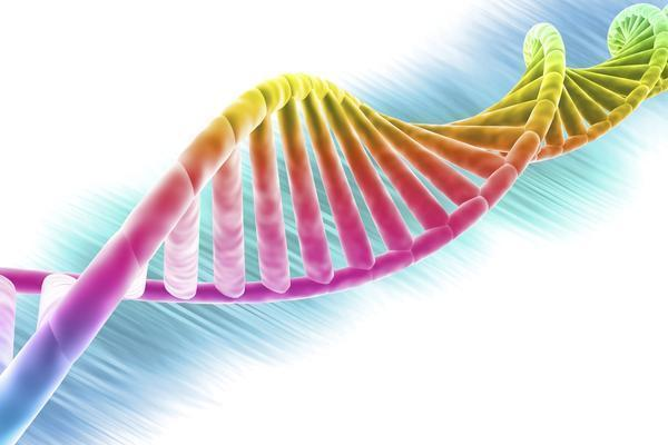 How do genes and environment interact?