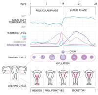 What causes heavy bleeding with clots and severe cramps unlike my periods cramps 3days prior to my regular 25days cycle periods.