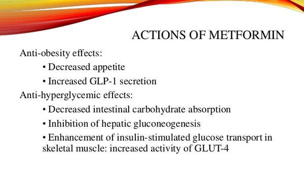 metformin research paper