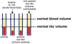 Is there correlation between low blood volume and anemia? Can you clarify?