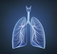 Will bronchitis infectio go away by itself?