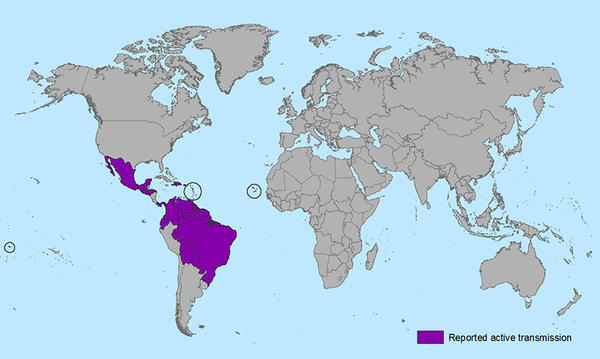 In which countries in the Americas do I have to worry about Zika virus from mosquito bites?