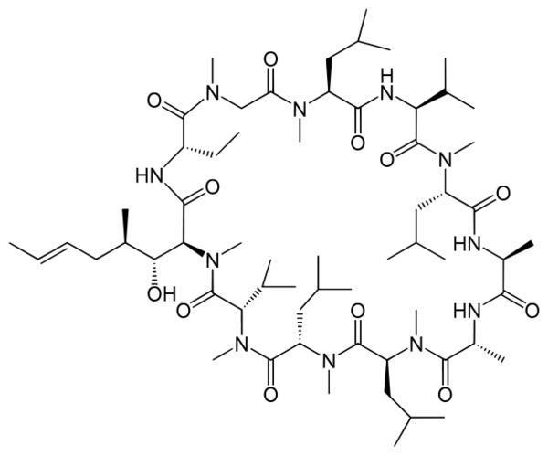 Cyclosporine neoral (cyclosporine) and pandax ginseng interactions?