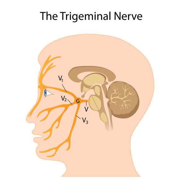 I have had tingling nose and area near eyes and temples. Also tense neck muscles would that be the cause of the tingling?