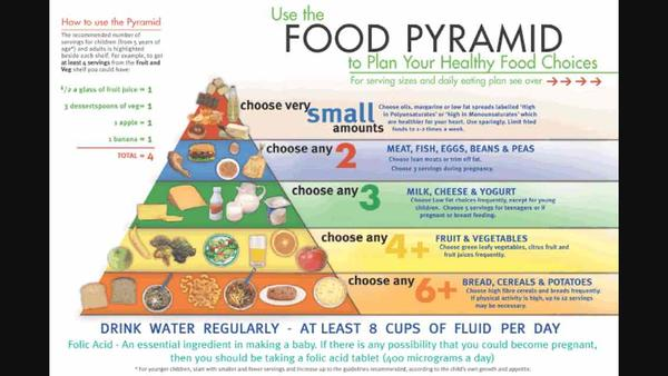Help! Exactly what is the food pyramid?
