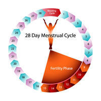 What causes period to come heavy with clots on 1st period after surgical abortion?