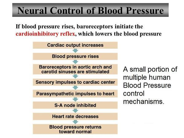 My blood pressure increase like prehypertension then its low again for 1 or 2 weeks then again like pre hypertension?