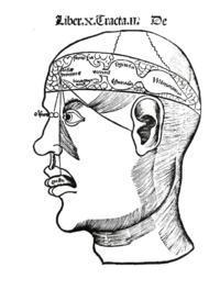 What is the definition or description of: Cognitive impairment?