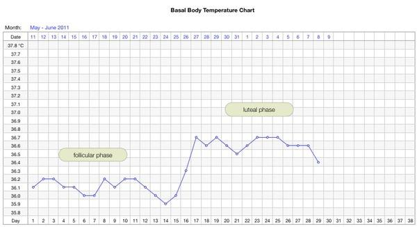 how to read temperature chart for ovulation
