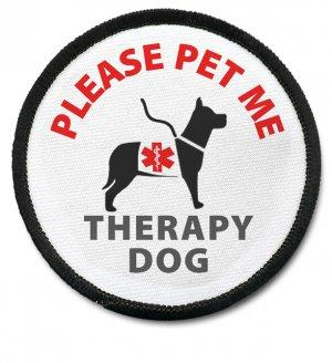 What is animal assisted therapy.?
