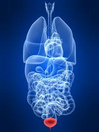 Help docs, is interstitial cystitis curable?