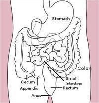 Right abdominal pain and swelling where right abdomen is located ?