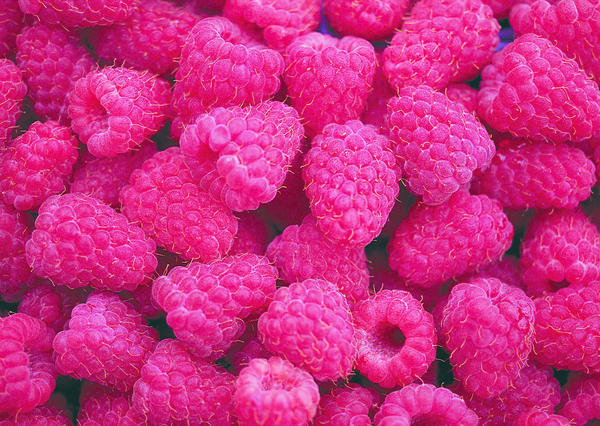 Will Raspberry Zinger Herbal Tea have the same affects on pregnancy as Raspberry Leaf Tea??