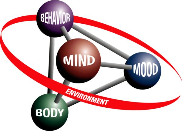 What is cognitive therapy?