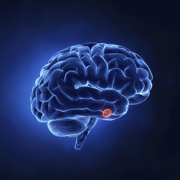 Could you live without your pituitary gland?