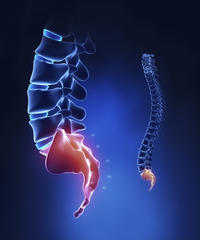 What causes pain in the tailbone?