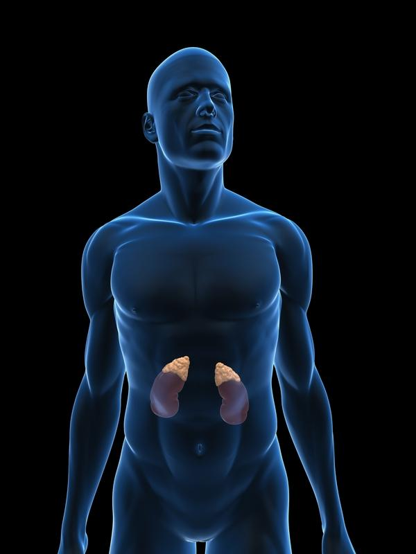 Can adrenal insufficiency cause high blood pressure or low blood pressure?