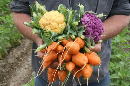Why are organic fruits and vegetables so expensive?