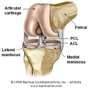 What is anterior cruciate ligament) reconstruction surgery?