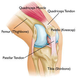 What is this treatment for the patellar tendon?