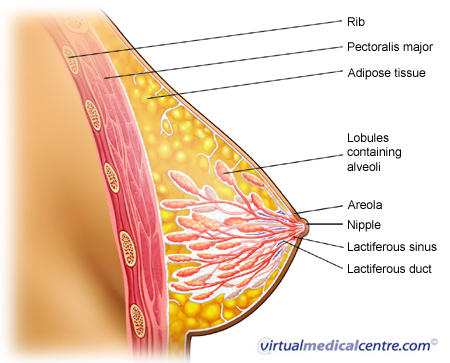 What are possible causes of a leaking nipple?