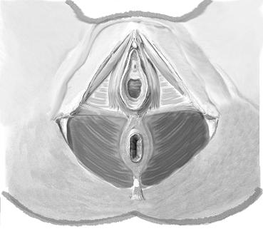 What's the best way to tighting your vagina hole?