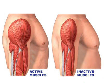 How is muscle atrophy caused?