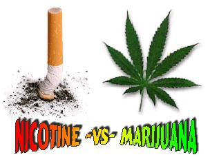 Is smoking marijuana less dangerous for you than smoking tobacco?