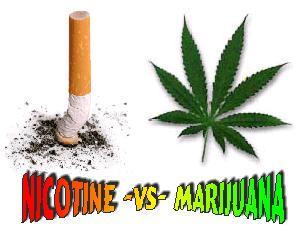 Is smoking marijuana less dangerous for you than smoking tobacco?