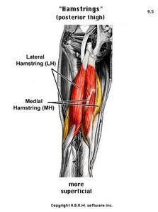 How can you know if you have a strained hamstring? What can make it heal faster?