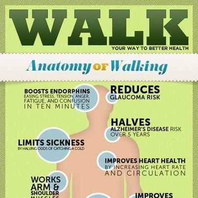 Is walking for 40minutes everyday good enough exercise for a 33year old man?